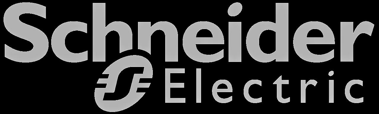 Schneider Logo Grey